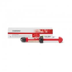 Kulzer Charisma Syringe 1 X 4g - A2